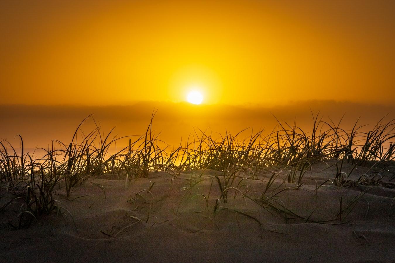 Sun in New Zealand